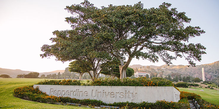 Flowers at the entrance sign - Pepperdine GSEP
